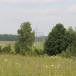 Бурцево, Шмидтово